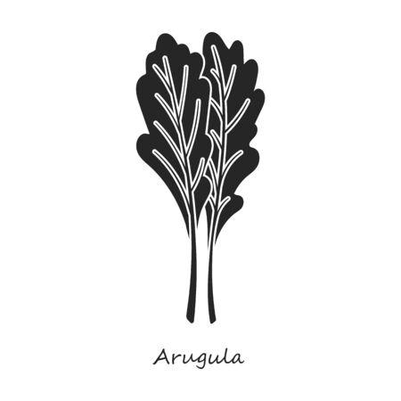 Arugula vector icon.Black,simple vector icon isolated on white background arugula.