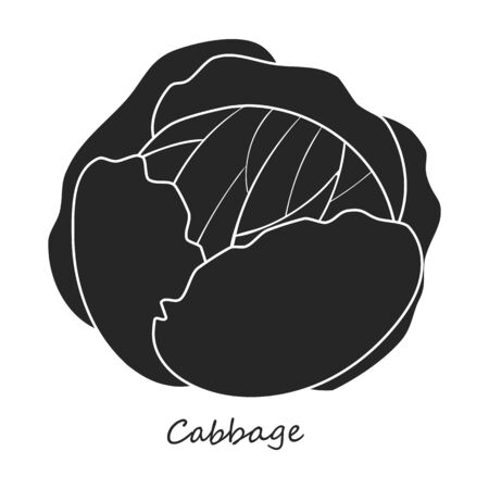 Cabbage vector icon.Black,simple vector icon isolated on white background cabbage . Illustration