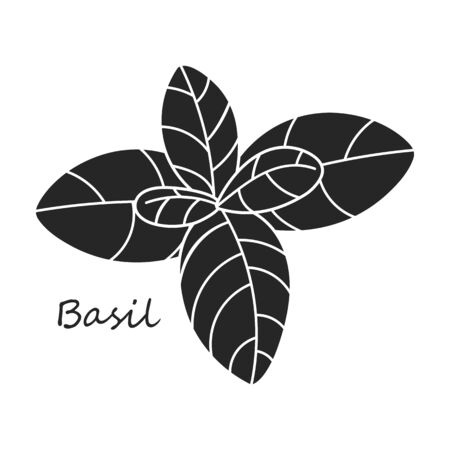 Basil vector icon.Black,simple vector icon isolated on white background basil . Иллюстрация