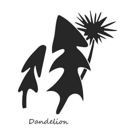 Dandelion vector icon.Black,simple vector icon isolated on white background dandelion.