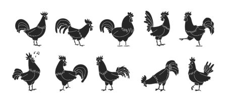 Cock of animal isolated black,simple set icon.Vector illustration set rooster cockerel.Vector black,simple icon cock of animal. Illusztráció