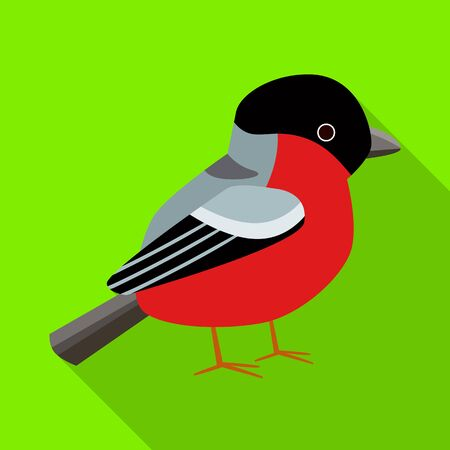 Isolated object of bullfinch and bird sign. Collection of bullfinch and robin vector icon for stock.