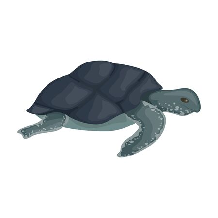Sea turtle vector icon.Cartoon vector icon isolated on white background sea turtle. Vettoriali