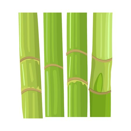 Vector illustration of stem and sugar logo. Graphic of stem and cane stock symbol for web.