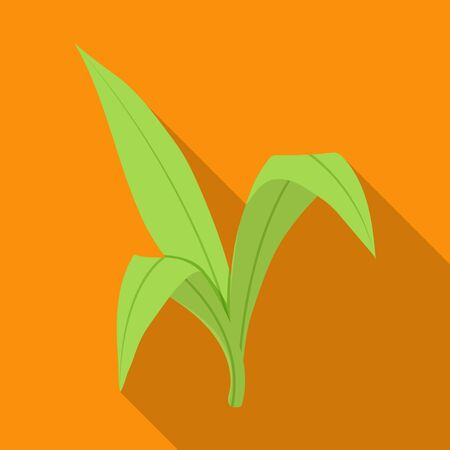 Leaves of sugarcane vector icon.Flat vector icon isolated on white background leaves of sugarcane .