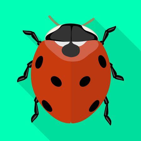 Lady bug vector icon.Flat vector icon isolated on white background lady bug.