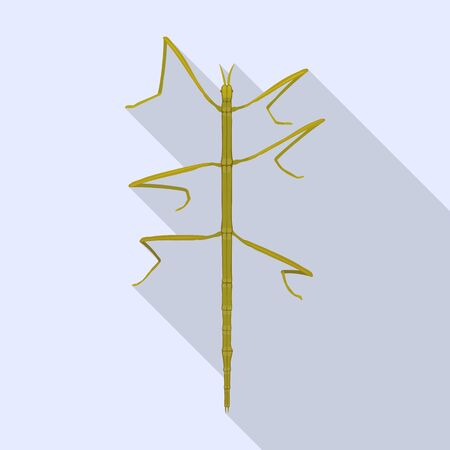 Stick insect vector icon.Flat vector icon isolated on white background stick insect.