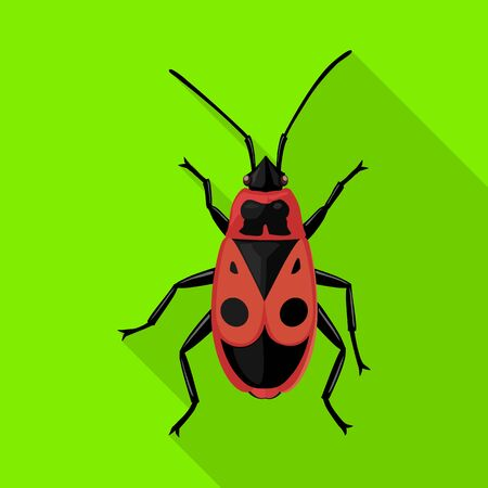Insect firefly vector icon.Flat vector icon isolated on white background insect firefly .  イラスト・ベクター素材