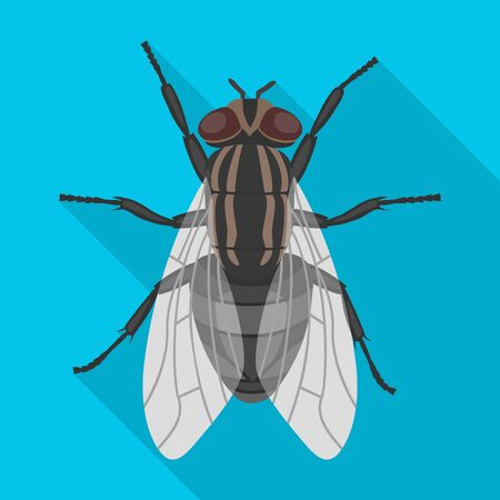 Insect fly vector icon.Flat vector icon isolated on white background insect fly. Иллюстрация