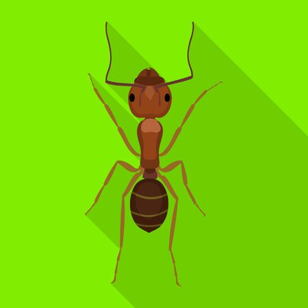 Ant vector icon.Flat vector icon isolated on white background ant .  イラスト・ベクター素材