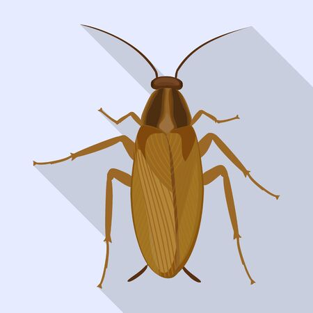 Cockroach vector icon.Flat vector icon isolated on white background cockroach.  イラスト・ベクター素材