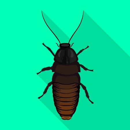 Cockroach insect vector icon.Flat vector icon isolated on white background cockroach insect.