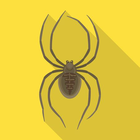 Spider vector icon.Flat vector icon isolated on white background spider .
