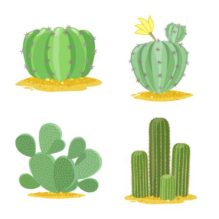 Vector illustration of cacti and mexican symbol. Collection of cacti and botanical vector icon for stock.