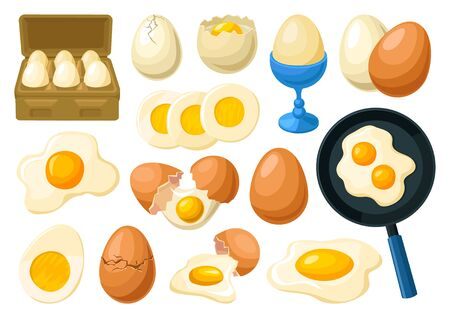Chicken egg vector cartoon set icon. Vector illustration farm poultry on white background . Isolated cartoon set icons chicken egg.