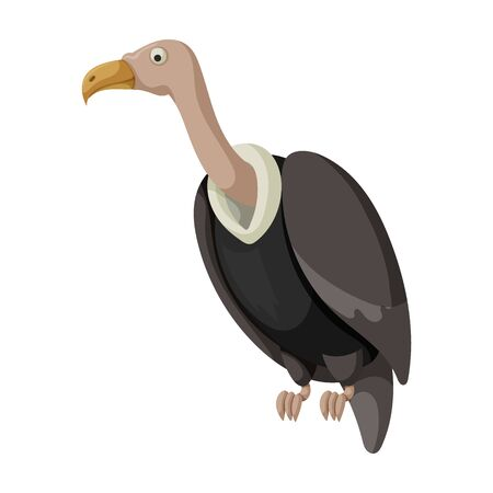 Vulture bird vector icon.Cartoon vector icon isolated on white background vulture bird. Иллюстрация
