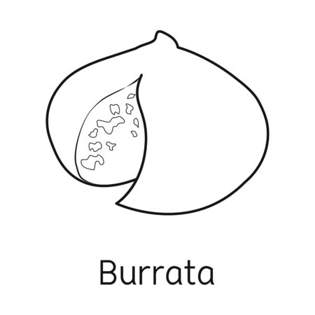 Vector illustration of cheese and burrata sign. Graphic of cheese and meal stock symbol for web.