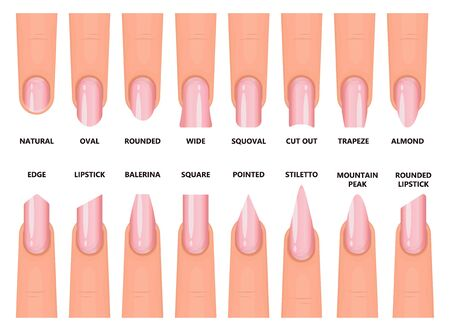 Shape nail vector illustration on white background. Isolated cartoon set icon fingernail. Vector cartoon set icons shape nail.