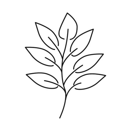 Vector design of leaf and coffee icon. Collection of leaf and plant stock symbol for web. Illustration