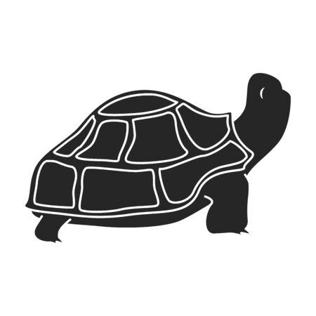 Sea turtle vector icon.