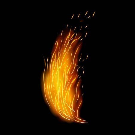 Flame vector icon.Realistic vector icon isolated on white background flame. Ilustracje wektorowe