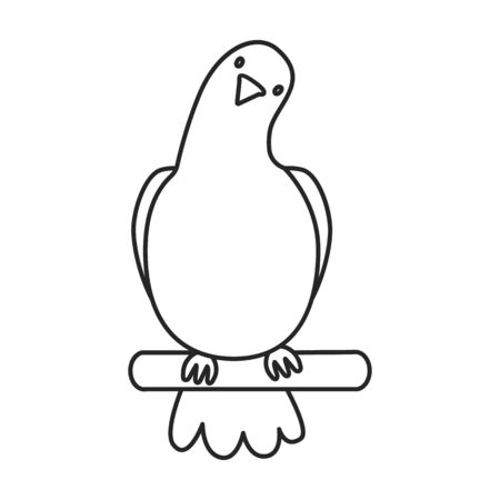 Pigeon vector icon.Outline vector icon isolated on white background pigeon.