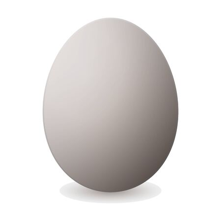Egg vector icon. Realistic vector icon isolated on white background egg. Vetores