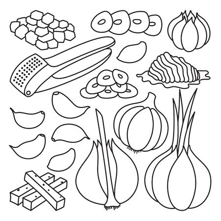 Vector illustration garlic on white background . Isolated outline set icon food of onion . Vector outline set icon garlic.