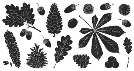 Acorn of oak black vector set icon. Vector illustration autumn leaf and nut on white background.Isolated black icon acorn and cone. Ilustração