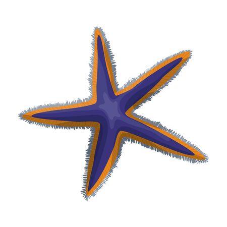 Starfish vector icon.Cartoon vector logo isolated on white background starfish.