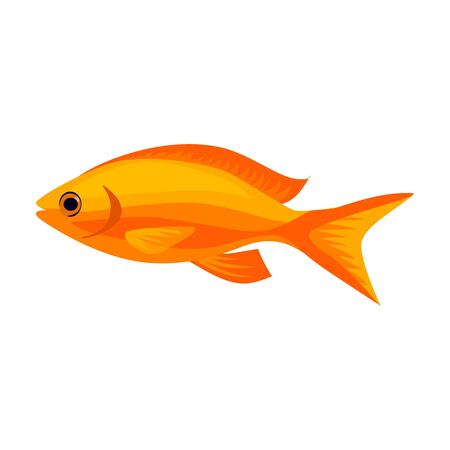 Tropical fish vector icon.Cartoon vector icon isolated on white background tropical fish. Vector Illustration
