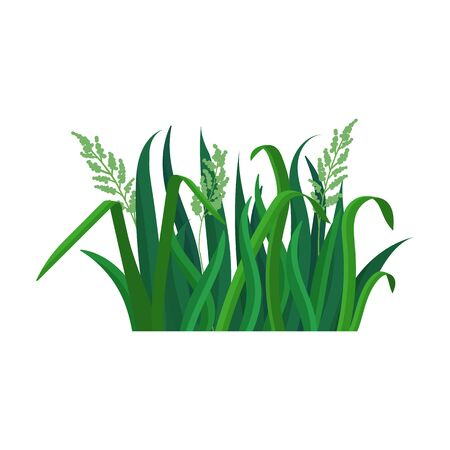 Green grass vector icon.Cartoon vector logo isolated on white background green grass.