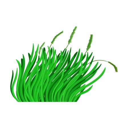 Green grass vector icon.Cartoon vector icon isolated on white background green grass.