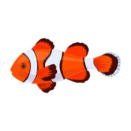 Tropical fish vector icon.Cartoon vector icon isolated on white background tropical fish. Ilustração