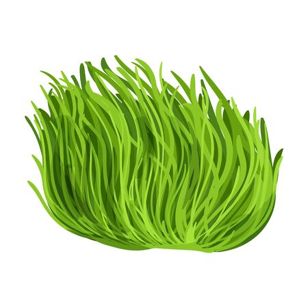 Seaweed vector icon.Cartoon vector icon isolated on white background seaweed. Vecteurs