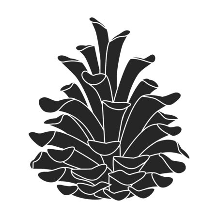 Pineof cone vector icon.Black vector icon isolated on white background pine of cone. Vektorové ilustrace
