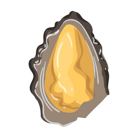 Oyster vector icon.Cartoon vector icon isolated on white background oyster.