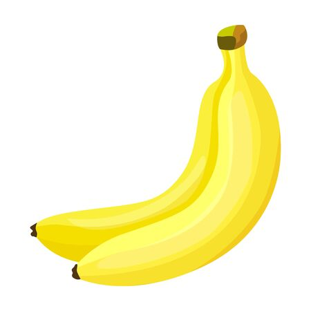 Bunch banana vector icon.Cartoon vector icon isolated on white background bunch banana. Vektorové ilustrace