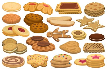 Biscuit vector cartoon set icon. Isolated cartoon set icon cookie.Vector illustration biscuit on white background. Vektorové ilustrace