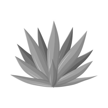 Isolated object of agave and tequila  . Web element of agave and blue stock symbol for web.