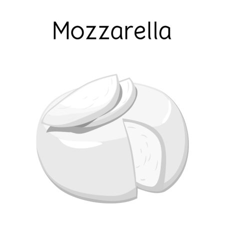 Vector design of cheese and mozzarella symbol. Graphic of cheese and piece stock symbol for web.
