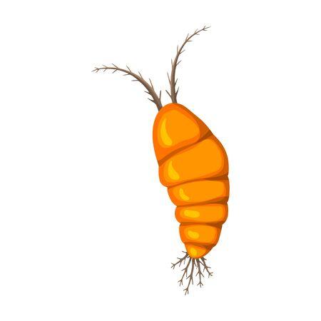 Plankton vector icon.Cartoon vector icon isolated on white background plankton.