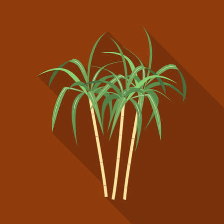 Vector illustration of palm and cane icon. Graphic of palm and plant stock symbol for web.
