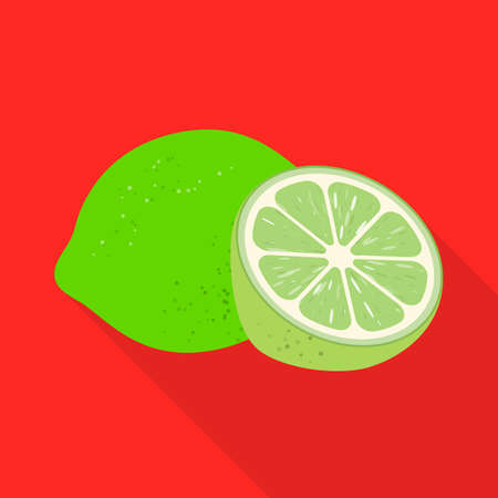 Isolated object of green lemon icon. Web element of green lime vector icon for stock.