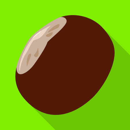 Chestnut vector icon.Flat vector icon isolated on white background chestnut.
