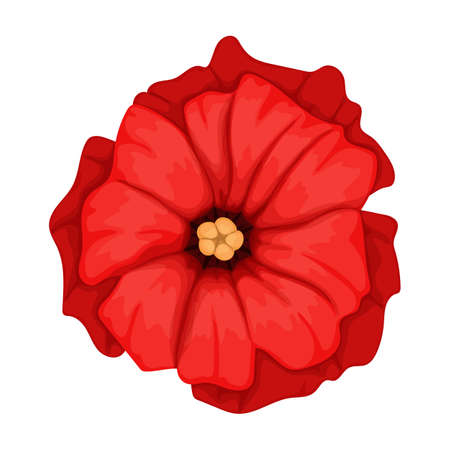Poppy flower vector cartoon icon. Vector illustration poppy red on white background. Isolated cartoon illustration icon of red elower.