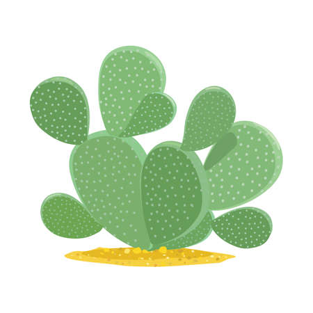 Vector illustration of cactus and succulent icon. Graphic of cactus and green vector icon for stock.