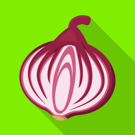 Vector design of onion and fresh symbol. Web element of onion and half stock vector illustration.