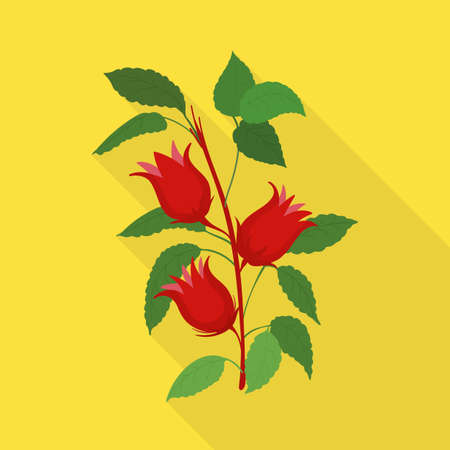 Isolated object of flower and hibiscus sign. Graphic of flower and tropical stock symbol for web.