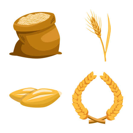 Vector illustration of grain and harvest sign. Set of grain and ear stock symbol for web.